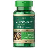 コルディセプス(冬虫夏草) 1500 mg